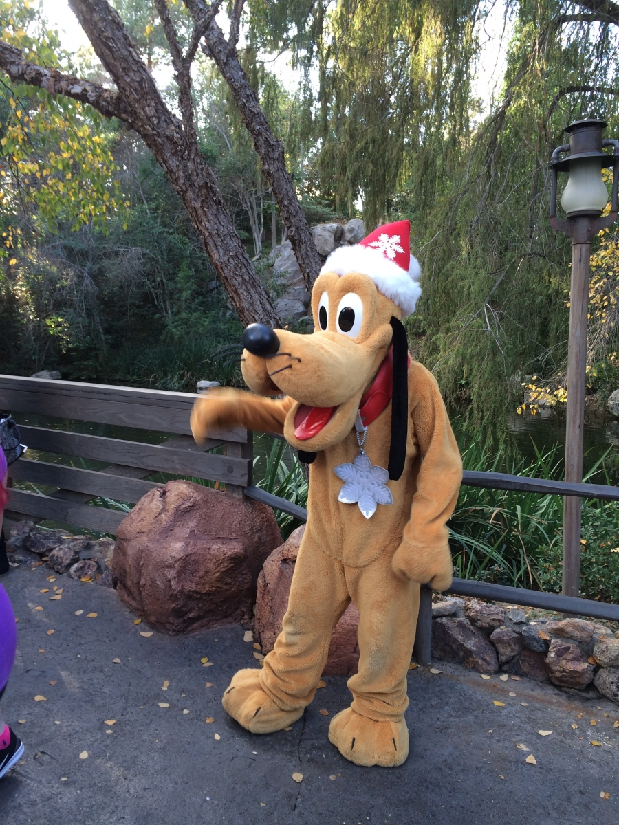 Holiday Pluto greeting guests